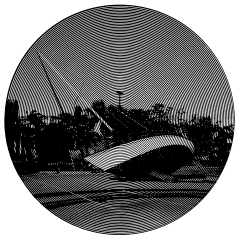 Coconut Grove After Hurricane Wilma. Cutout Mat Board. 31 inches diameter . 2020